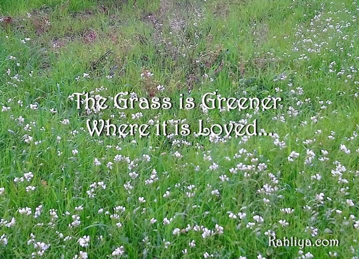 DSC_0492 crp grass signed(1)